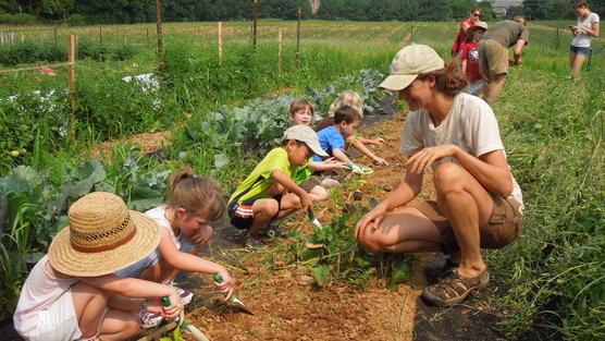 L'educazione all'aperto è legge nella Regione Lazio. I bambini frequenteranno fattorie, riserve naturali e parchi