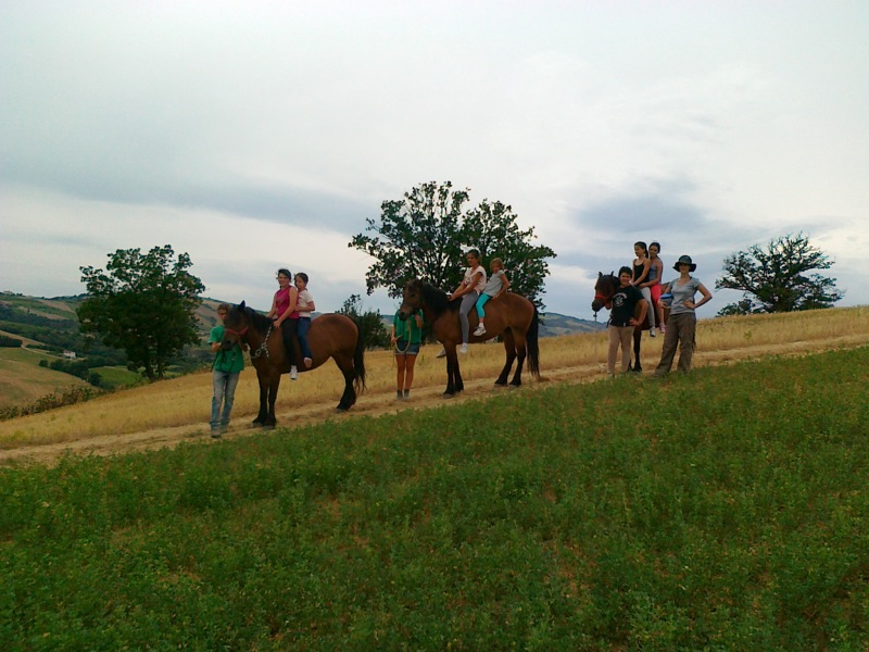 Estate in fattoria